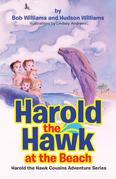 Harold the Hawk at the Beach