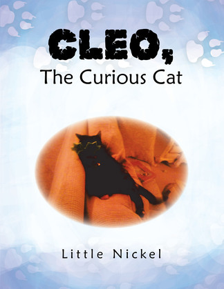 Cleo, the Curious Cat