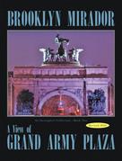Brooklyn Mirador
