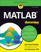 MATLAB For Dummies