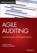 Agile Auditing