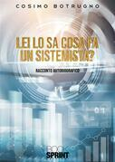 Lei lo sa cosa fa un sistemista?