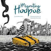 Migrating Hoopoe