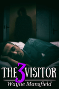 The Visitor 3