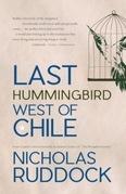 Last Hummingbird West of Chile