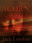 The Acorn Planter