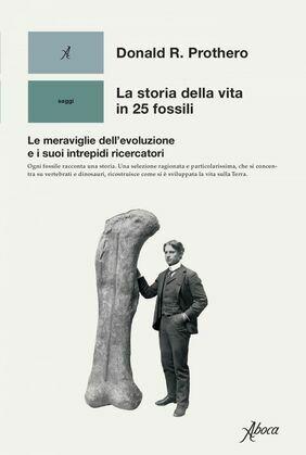 La storia della vita in 25 fossili