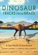 Dinosaur Tracks from Brazil