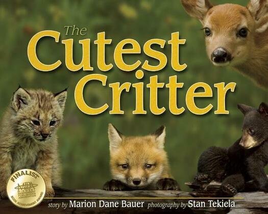 Cutest Critter