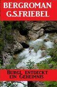 Burgl entdeckt ein Geheimnis: Bergroman