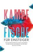 Kampffische für Einsteiger: Wie Sie Ihren Kampffisch Betta splendens sicher kaufen, artgerecht halten und richtig füttern