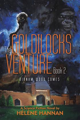 The Goldilocks Venture Book 2