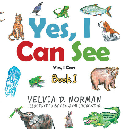 Yes, I Can See