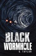 The Black Wormhole