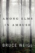 Among Elms, in Ambush