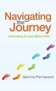 Navigating the Journey