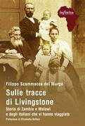 Sulle tracce di Livingstone