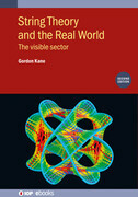 String Theory and the Real World (Second Edition)