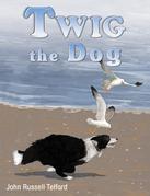 Twig the Dog