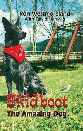 Skidboot