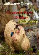 Creatura Nova