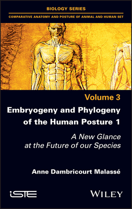 Embryogeny and Phylogeny of the Human Posture 1