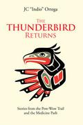 The Thunderbird Returns