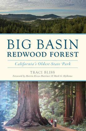 Big Basin Redwood Forest