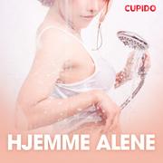 Hjemme alene - erotiske noveller