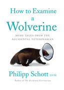 How to Examine a Wolverine
