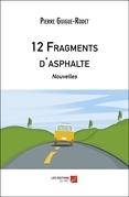 12 Fragments d'asphalte
