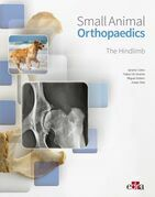 Small Animal Orthopaedics. The Hindlimb