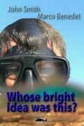 Whose bright idea was this