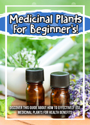 Medicinal Plants For Beginner's! Discover This Guide About How To Effectively Use Medicinal Plants For Health Benefits