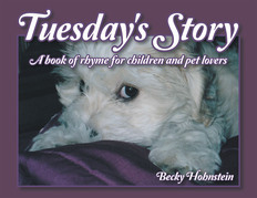 Tuesday's Story