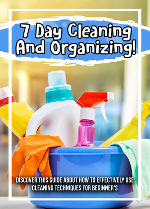 7 Day Cleaning And Organizing! Discover This Guide About How To Effectively Use Cleaning Techniques For Beginner's