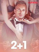 2+1 – erotiske noveller