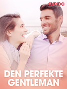Den perfekte gentleman – erotiske noveller