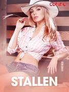 Stallen – erotiske noveller