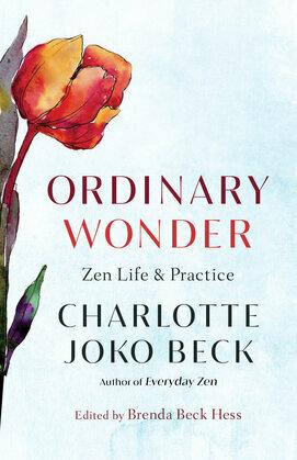Ordinary Wonder