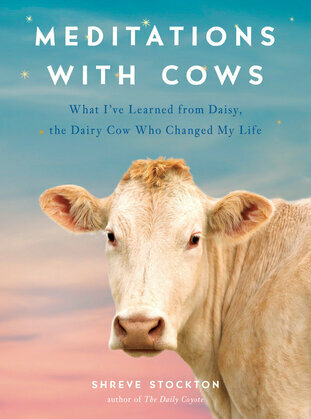 Meditations with Cows