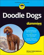 Doodle Dogs For Dummies