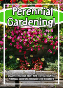 Perennial Gardening! Discover This Guide About How To Effectively Use Perennial Gardening Techniques For Beginner's