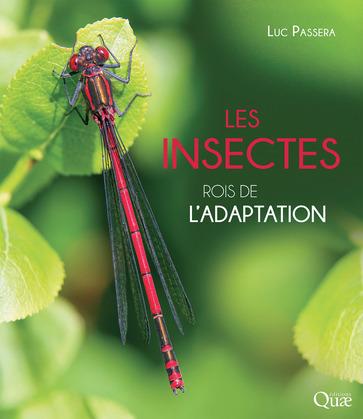 Les insectes, rois de l'adaptation