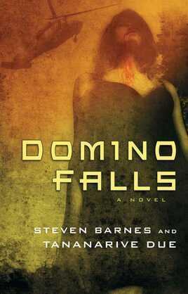 Domino Falls: A Novel