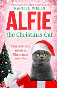 Alfie the Christmas Cat