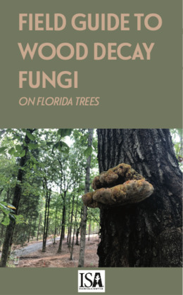 Field Guide to Wood Decay Fungi on Florida Trees