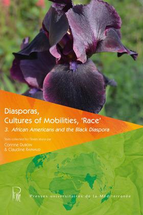 Diasporas, Cultures of Mobilities, 'Race' 3