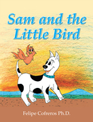 Sam and the Little Bird