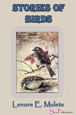 StoriesofBirds